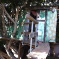 Treehouse, La Palma (Canaries)
