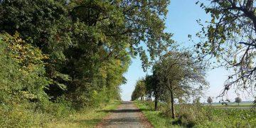 Limberg, Calenberger Land